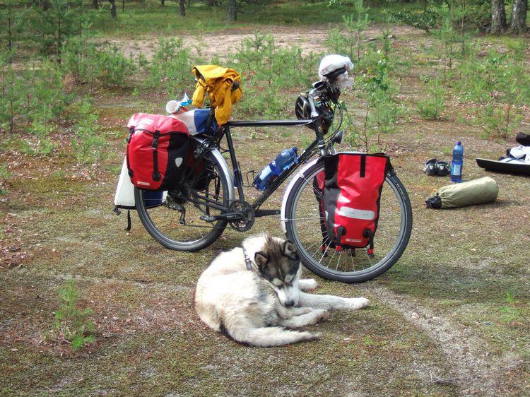 mit-dem-fahrrad-ans-nordkap.de fahrrad nordkap thumbs fahrrad-reise-tour--dscf1999-finnland.jpg