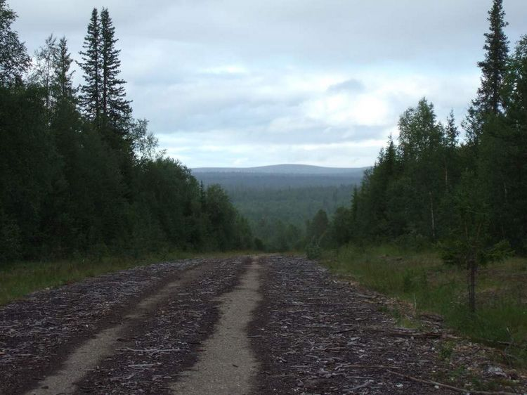 mit-dem-fahrrad-ans-nordkap.de fahrrad nordkap thumbs fahrrad-reise-tour-dscf2078-finnland.jpg
