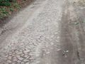 mit-dem-fahrrad-ans-nordkap.de fahrrad nordkap thumbs fahrrad-reise-tour--dscf1797-deutschland.jpg