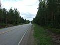 mit-dem-fahrrad-ans-nordkap.de fahrrad nordkap thumbs fahrrad-reise-tour--dscf1971-finnland.jpg