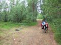 mit-dem-fahrrad-ans-nordkap.de fahrrad nordkap thumbs fahrrad-reise-tour--dscf2093-finnland.jpg