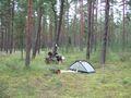 mit-dem-fahrrad-ans-nordkap.de fahrrad nordkap thumbs fahrrad-reise-tour-dscf1848-schweden.jpg