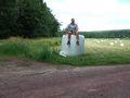 mit-dem-fahrrad-ans-nordkap.de fahrrad nordkap thumbs fahrrad-reise-tour-dscf1859-schweden.jpg