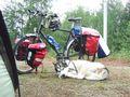 mit-dem-fahrrad-ans-nordkap.de fahrrad nordkap thumbs fahrrad-reise-tour-dscf1996-finnland.jpg
